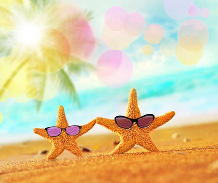 glasses in the sand: Beach. Summer. Starfish on the seashore. Stock Photo
