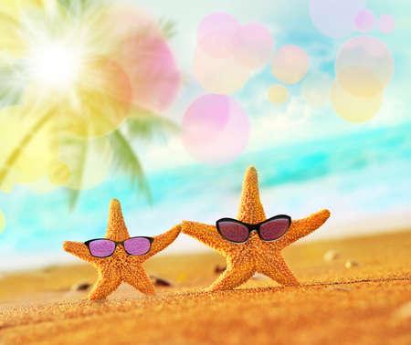 Beach. Verano. Estrellas de mar en la orilla del mar.