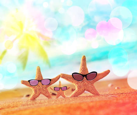 fashion sunglasses: Beach. Summer. Starfish on the seashore. Stock Photo