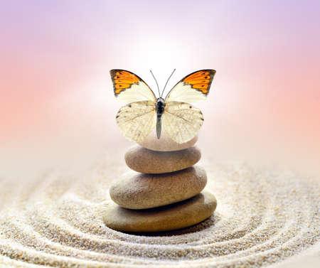 나비와 돌의 균형 스톡 콘텐츠