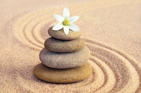 스파 개념. 꽃과 돌