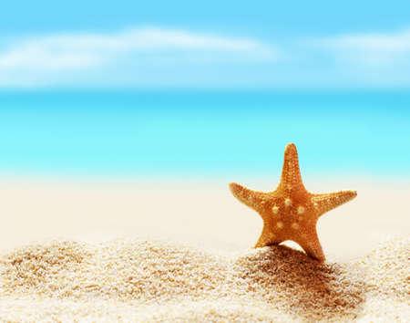 Summer beach. Starfish on the seashore