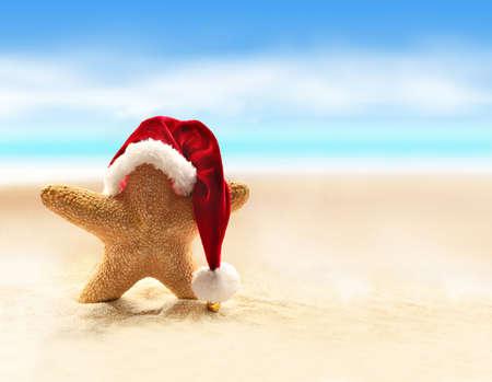 tropical christmas: Sea-star in red santa hat walking at sea beach.