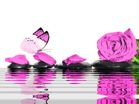 tranquilly: Butterfly, rose, petals and black  stones in the water. Spa concept. Stock Photo