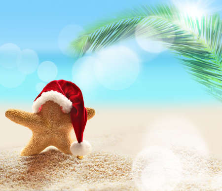 Summer beach. Merry Christmas. Starfish in Santa Claus hat. Standard-Bild