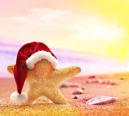seasons greetings: Starfish in santa hat on summer beach and merry christmas