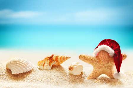 verano: Estrellas de mar en el sombrero de santa en la playa de verano y feliz navidad