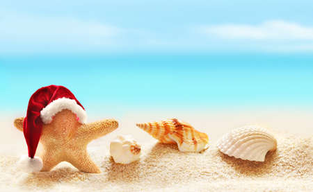 christmas concept: Starfish in santa hat on summer beach and merry christmas