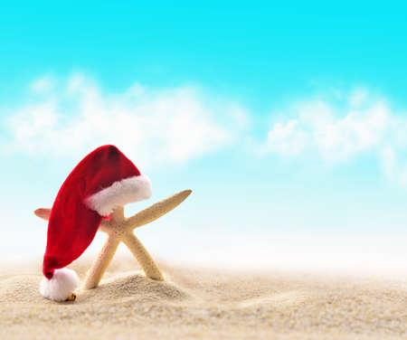 starfish beach: starfish in Santa Claus hat on a sand beach