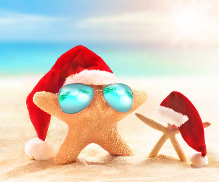 christmas tide: starfish in santa hat and sunglasses on the sunny beach