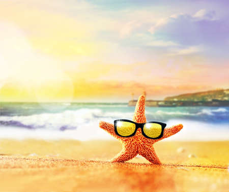 sunglass: Summer beach. Starfish in sunglasses on the seashore.