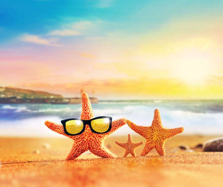 funny animals: Summer beach. Starfish family in sunglasses on the seashore.Beach party.