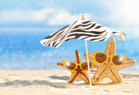 Summer concept with funny starfish in sunglasses under umbrella