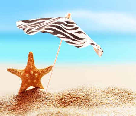 Starfish under umbrella on the sandy beach.