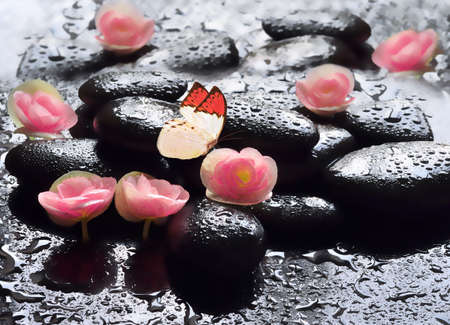 red stone: Flowers and black stones with butterfly. Spa concept.