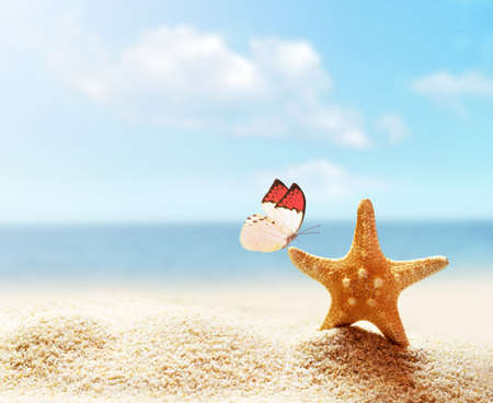 beach butterfly: Summer beach. Butterfly and starfish on the sand. Stock Photo