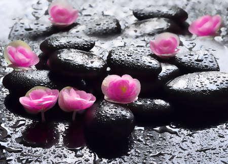 black stones: Flowers and wet black stones. Spa concept.