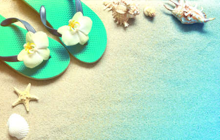 Flip Flops in the sand with shells and orchid flowers. Summertime on beach concept. Summer beach.