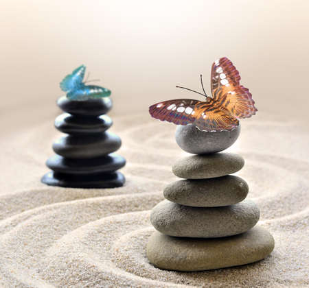 beach butterfly: Stone balance and butterfly on the beach