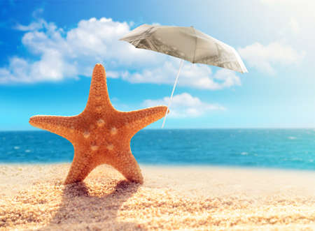 warm water fish: starfish with parasol on the sandy beach Stock Photo