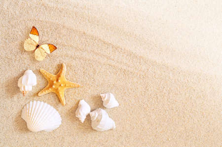 A lot of seashells, starfish and butterfly on sand. Exotic concept. Summer beach. Stock Photo