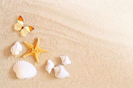 Een heleboel schelpen, zeesterren en vlinder op zand. Exotic concept. Zomerstrand. Stockfoto