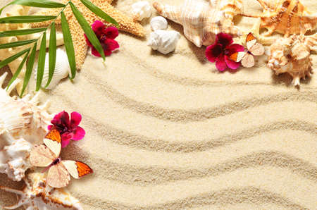 beach butterfly: A lot of seashells, starfish, flowers and butterfly on sand. Exotic concept. Summer beach.