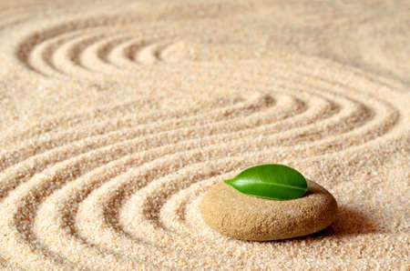 stones and green leaf on the sand with circles and waves