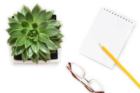 Plat leggen, bovenaanzicht kantoortafel. werkruimte met succulent, cactus, notebook op witte achtergrond. Stockfoto