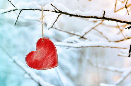 Wooden red heart on snowy tree branch in winter. Holidays happy valentines day celebration love concept.