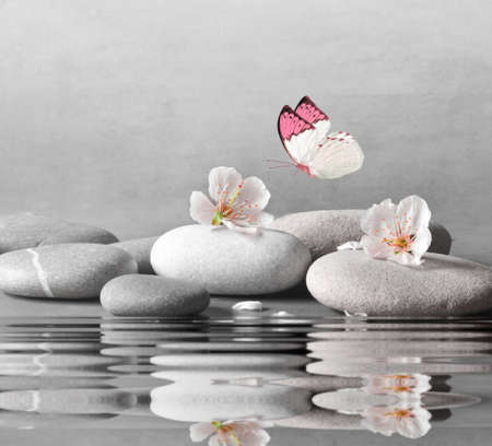 flower and stone zen spa on water surface and grey background.