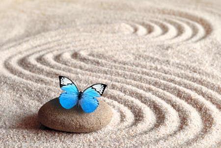 Una mariposa azul vivo sobre una piedra zen con patrones circulares en el grano de arena