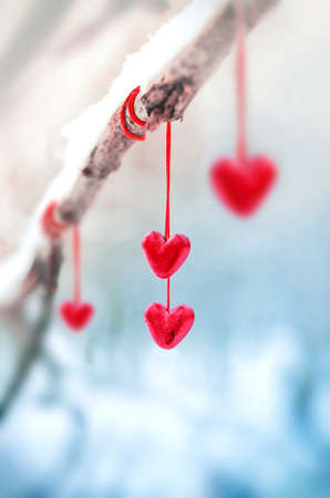 Red hearts on snowy tree branch in winter. Holidays happy valentines day celebration heart love concept