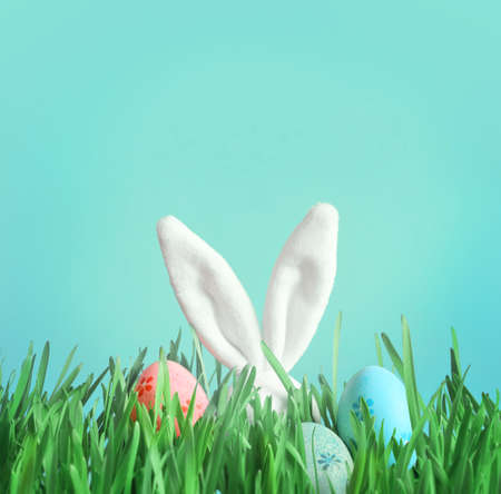 Easter funny bunny on green grass and easter eggs. Easter background. Stock Photo