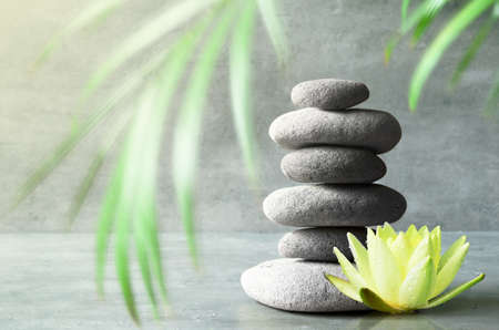 Stones balance, yellow flower lotus and green palm leaf. Zen and spa concept.
