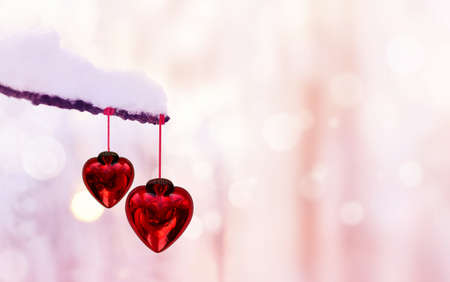 Red hearts on snowy tree branch in winter. Holidays. Happy valentines day celebration. Heart love concept.