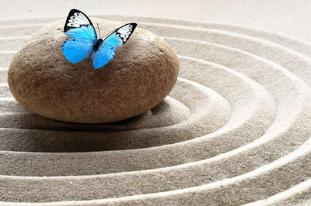 zen garden meditation stone background and butterfly with stones and lines in sand for relaxation balance and harmony spirituality or spa wellness.