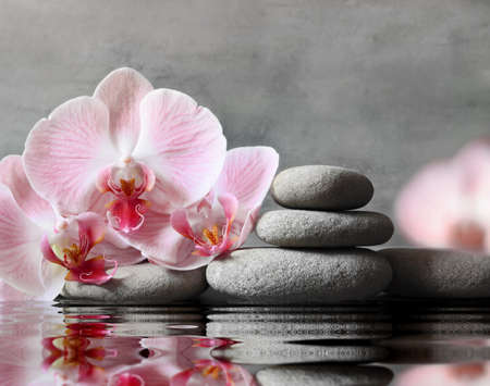 Set of pink orchid and gray spa stones on water and reflection. Spa concept. Фото со стока