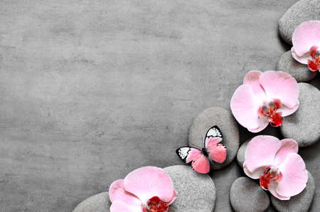 Spa stones and pink orchid on grey background and butterfly. Spa concept. Top view. 版權商用圖片