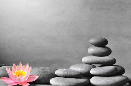 Stack of grey massage stones on grey background and lotus flower. Spa concept. Stock Photo