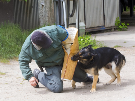 excise: SZEGED, HUNGARY - APRIL 26. 2015 - Excise officer (NAV) holds a presendation with a working dog in the Earth day event in Szeged Zoo.