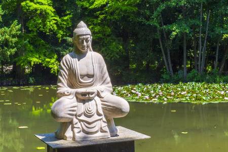 gautama: Buddha statue situated in a lake covered by lotus flowers in the arboretum in Szeged