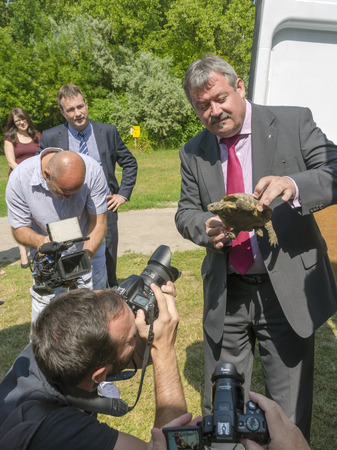 confiscated: SZEGED, HUNGARY - JULY 14. 2015 - Zsolt V. Nemeth Secretary of State for Rural Development holds a press conference in Szeged Zoo about returning confiscated Hermanns tortoises to Bulgaria