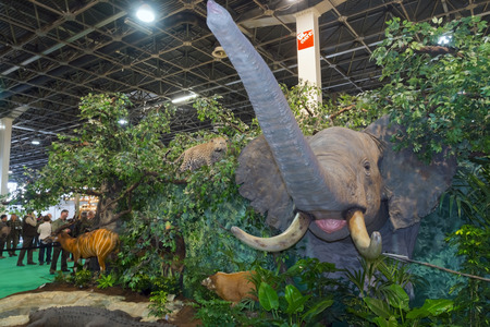 exhibit: BUDAPEST, HUNGARY - FEBRUARY 22. 2016 - Exhibit of African prepared animals at the Fishing, Hunting and Arms International Exhibition of Hungary (FeHoVa) in HUNGEXPO Editorial