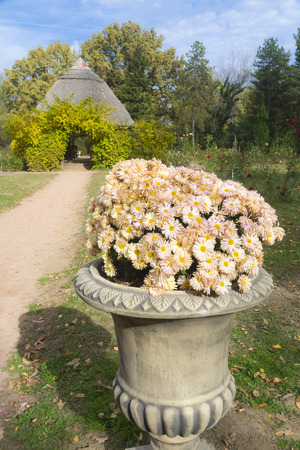 Rose garden with a hut