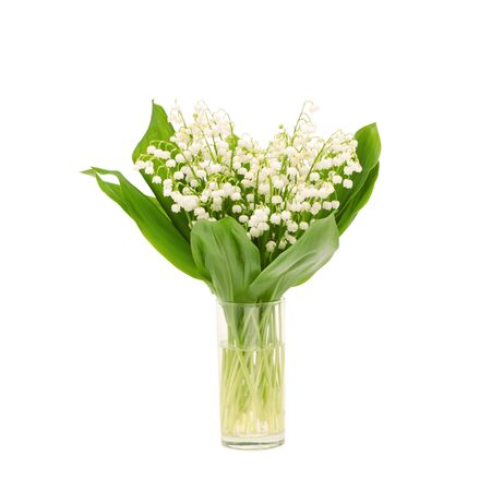 Bouquet of lily of the valley on white background  Stock Photo