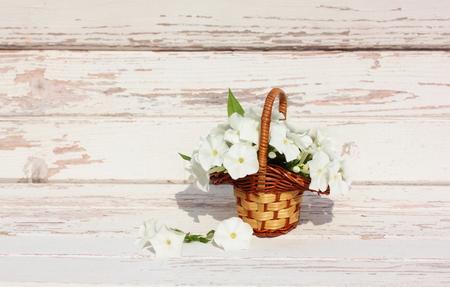 Bouquet Phlox flowers in basket on light wooden background