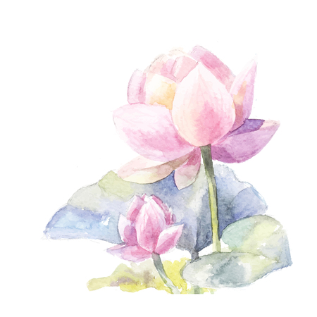 Watercolor pink lotus. Vector element isolated on white background. Symbol of India, yoga, ayurveda, meditation and buddhism. Suit for design of invitations, Flower with green leaves