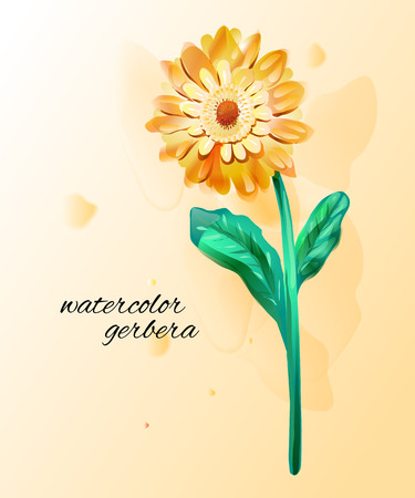 yellow daisy: Gerbera flowers made in watercolor. Single flower with paint drops. Vector botany illustration