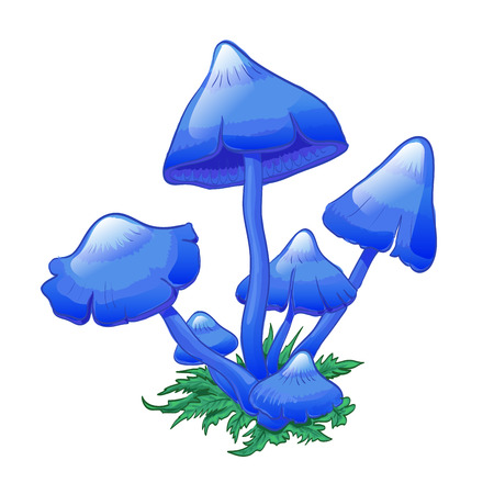 inedible: Blue Mushrooms (Entoloma hochstetteri), bunch of mushrooms on grass. Hand drwan illustration. Suit for childrens goods, as icon for game.